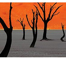 Dead Vlei Tree Skeletons Photographic Print