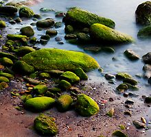 Green Rock by Elysia Ranking