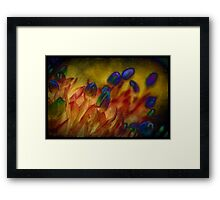 Tulips for Mother Framed Print