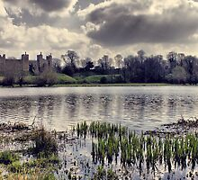 Framlingham Castle and St Michael's Church by Darren Burroughs
