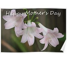 """Belladonna Lily """"Happy Mother's Day"""" Card Poster"""