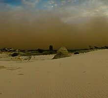 Mungo dust by donnnnnny
