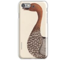 Australian Wood Drake iPhone Case/Skin