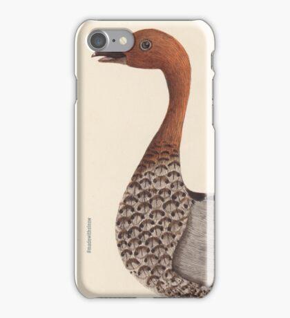 Australian Wood Drake iPhone Case/Skin