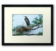 Supreme Ruler of the Nest Framed Print
