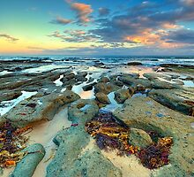 SUNNYMEAD BEACH by Rick Knowles