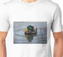 Mallard Duck Drake  Unisex T-Shirt