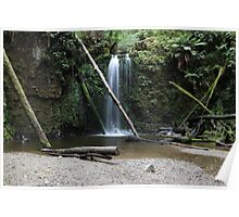 otway falls Poster