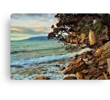 Waitete Bay Canvas Print