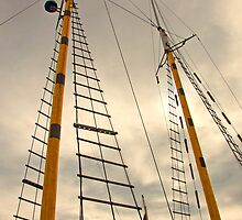 The Masts  by John  Kapusta