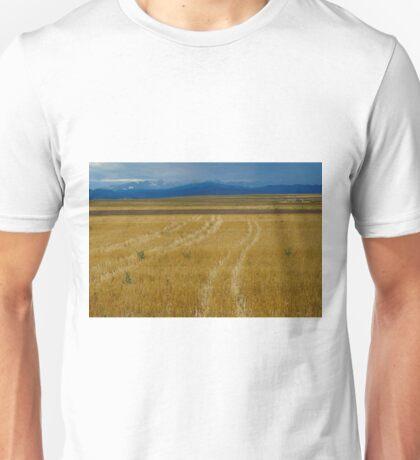 Amber Fields of Grain Unisex T-Shirt