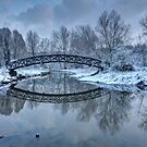 The Winter Crossing by Ursula Rodgers