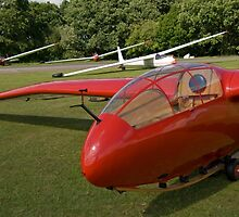 Vintage glider/sailplane. by sandyprints