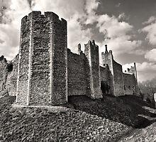 Framlingham Castle by Darren Burroughs