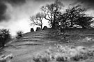 Uther's Hill BW by Andy Freer