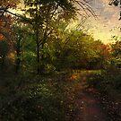 Evening Walk by John Rivera