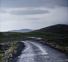 Crazy views of Iceland,  Mývatn. by Cappelletti Benjamin