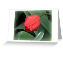 Spring Jewels Greeting Card