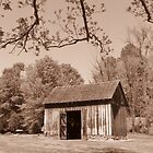 Home  by Stacy Brooks Photography