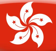 Hong Kong Flag Glass Oval Die Cut Sticker Sticker