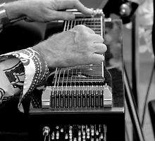 Slide Guitar by Janie. D
