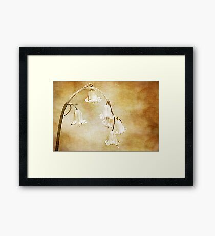textured bluebell archway Framed Print