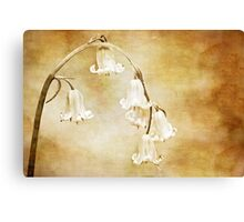 textured bluebell archway Canvas Print