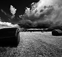 wrapped bales in mono by meirionmatthias