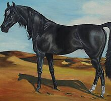The Black Stallion by WildestArt