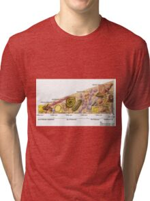 History of Everything Tri-blend T-Shirt