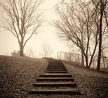Going up 9 of 9 by Richard Fortier