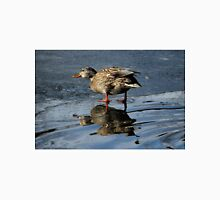 Mallard Duck Hen on melting ice Unisex T-Shirt