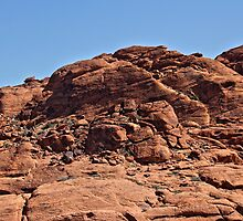 Red Bubbles in Red Rock Canyon by Vickie Emms
