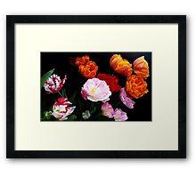 Dutch Tulips Framed Print