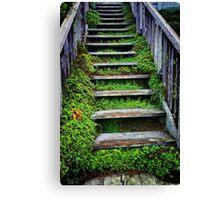 Weathered Stairway Canvas Print