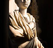 Vatican Statue II by Sarah N. Hood