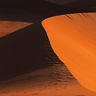 Desert Dune Detail by Jill Fisher