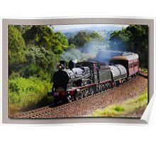 Steam Train Taree nsw Poster