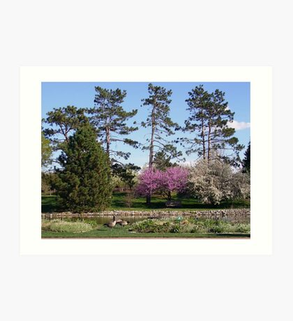 Trees in Spring Art Print