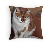 The office worker Throw Pillow