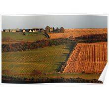 Rural field patterns Poster