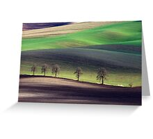 Shadowplay Greeting Card