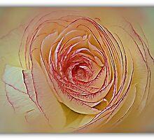 Swirl by KatarinaD