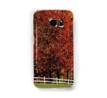 Autumn's explosion of color Samsung Galaxy Case/Skin