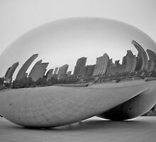 The Bean by fernblacker