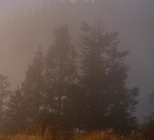 Morning Mist Poon Hill by SerenaB