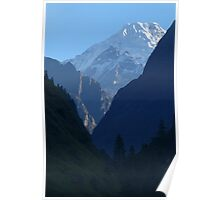 Pines and Mountains near Dharapani Poster