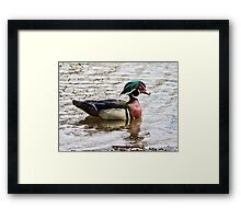 Nature's Brushstroke Framed Print