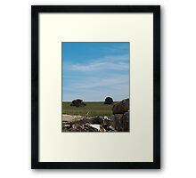 Trees among ruins Framed Print