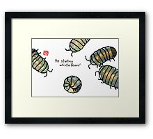 fifa world cup: armadillidiidae league (episode 2) Framed Print
